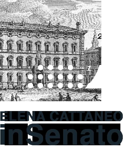 Cattaneo in senato